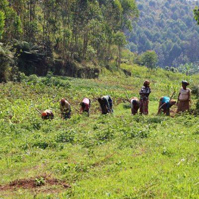 Accompagnement des femmes rurales dans l'agriculture familiale